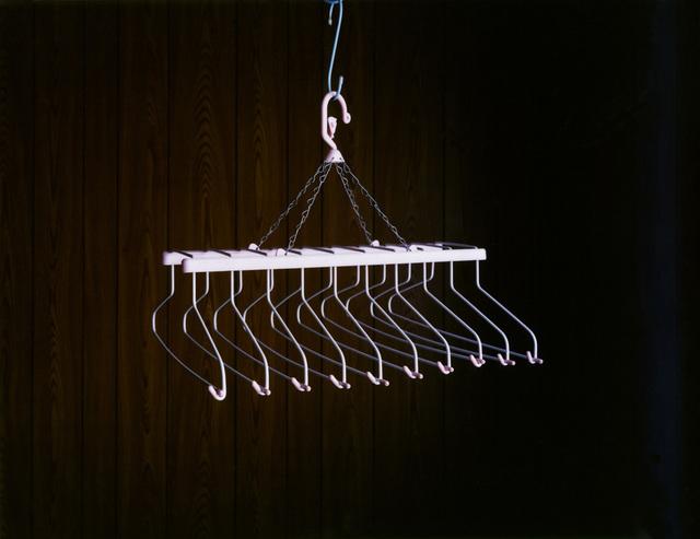 , 'Hanger I,' 2011, Galerie f5,6