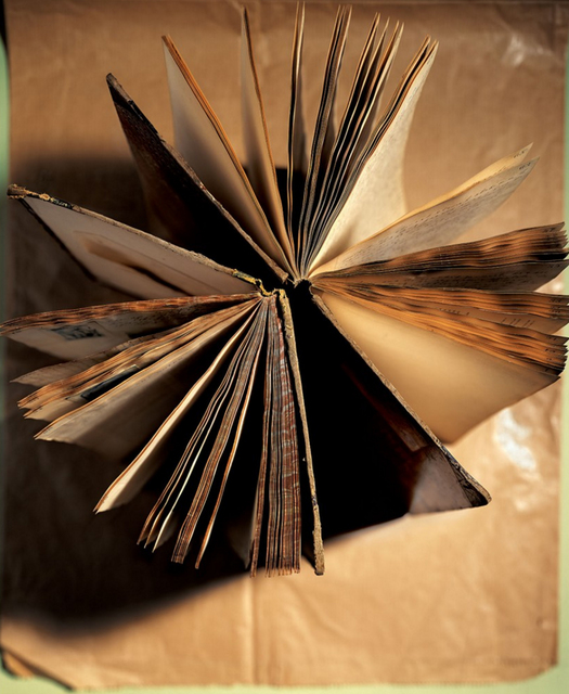 Laurie Rubin, 'Round Book', Chicago Art Source