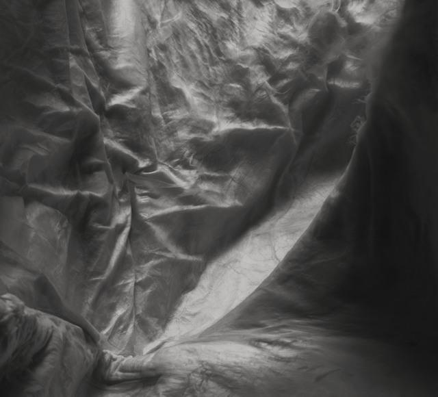 , 'Abdominal Aponeurosis,' 2018, Novalis Contemporary Art