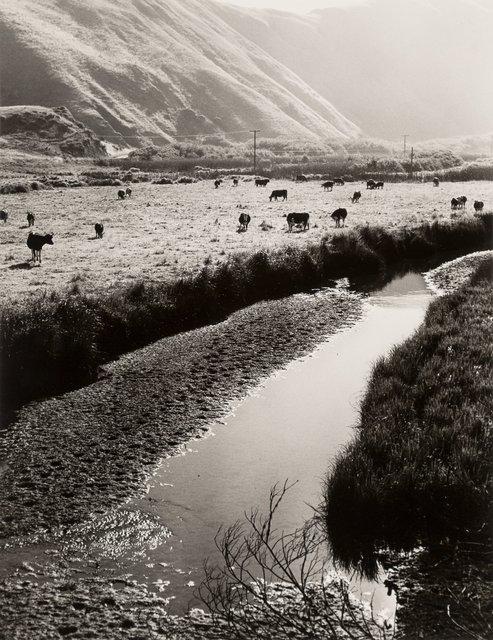 Ruth Bernhard, 'Jenner, California', 1975, Heritage Auctions