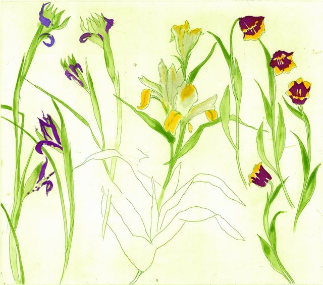 , 'Irises, Lilies, Tulips,' 2013, Glasgow Print Studio