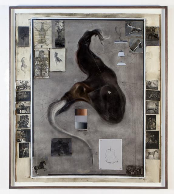 Hugo Wilson, 'Equine survey', 2013, Richard Taittinger Gallery