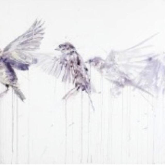 , 'Flying Sparrow,' 2015, Joseph Gross Gallery