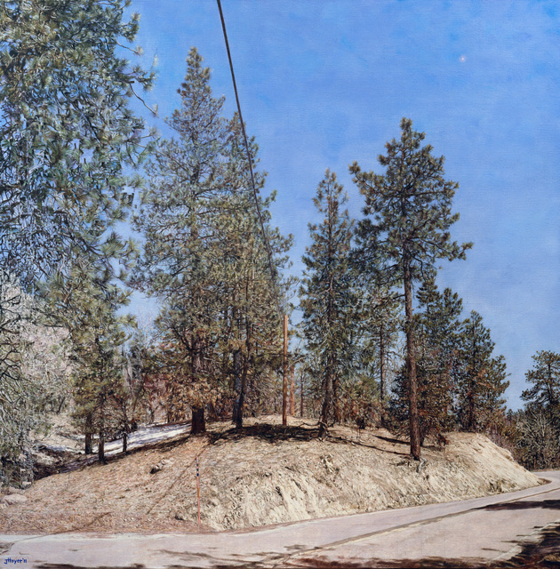 , 'Big Bear Land Slab,' 2011, Moskowitz Bayse