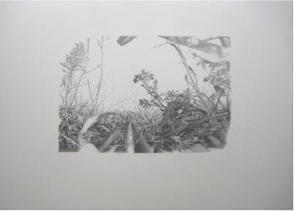 , 'Lieux de Mémoires, 34.000 Jahre Grasnarbe. Aufschüttung des Trümmerberges mit Berliner Kriegsschutt, 1950, Teufelsberg, Berlin, Deutschland,' 2010, Zilberman Gallery