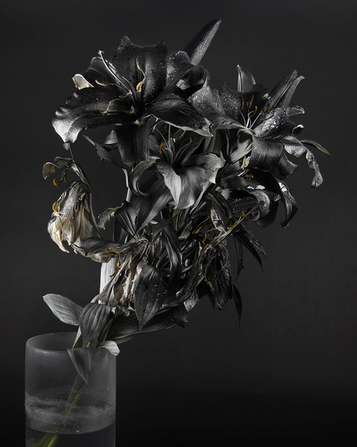 , 'Blackout (Krylon ColorMaster Gloss Black on White Oriental Lilies Sprayed Gloss White),' 2019, Catharine Clark Gallery