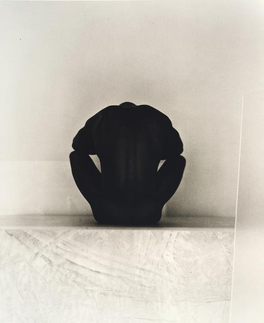 John Casado, 'Untitled 20251', 2001, Photography, Lith silver gelatin print, Andra Norris Gallery