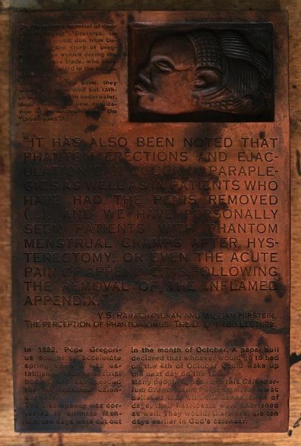 , 'Burnt Encyclopedia (Volume 6),' 2017, Copperfield