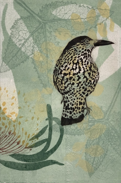 Trudy Rice, 'Who me? Wattlebird ', 2019, Print, Solarplate Etching & Monotype, MELBOURNE STUDIOS #trudyrice & #lisasewards