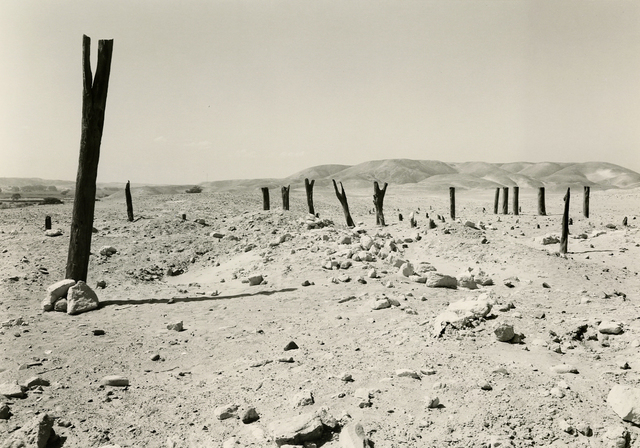 , 'Estaquería, Nazca Valley,' 1985, Deborah Bell Photographs
