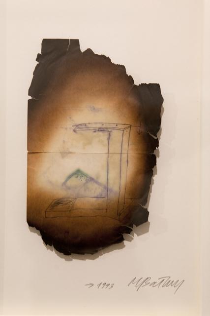 , 'Gallow and pine needles,' 1993, Galleria Raffaella Cortese