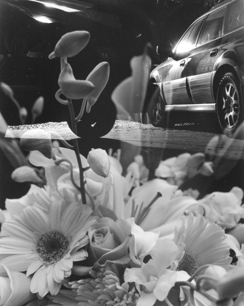 , 'Cars and Flowers,' 2011, Standard (OSLO)