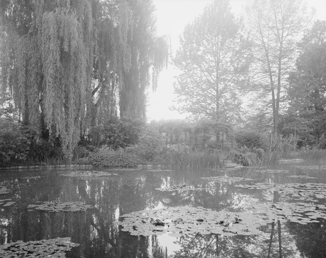 , 'Combray (Giverny IV), France (Haute-Normandie, 27 Eure),' 2010, Dominik Mersch Gallery