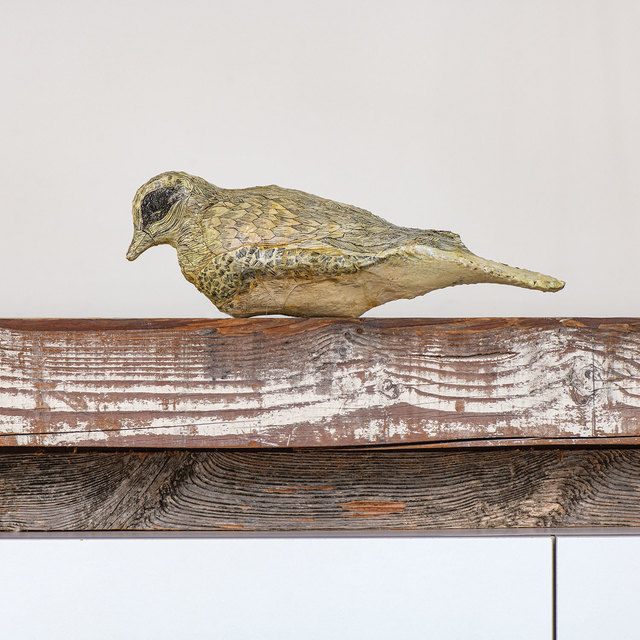 , 'Gut Bird,' 2016, browngrotta arts