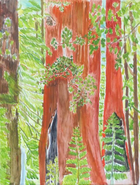 Beate Kulina, 'Redwoodtree', 2019, the gallery STEINER