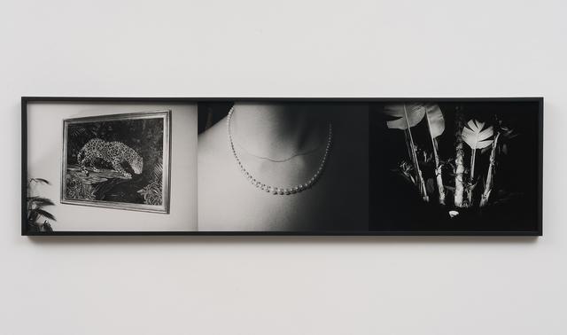 , 'The Tropics,' 1974, Swiss Institute