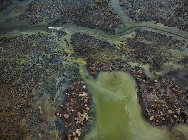 , 'Oil Bunkering #4, Niger Delta,' 2016, Flowers