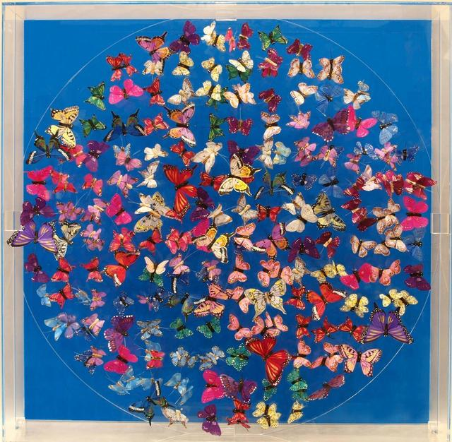 , 'Butterflies, blue,' 2016, Tanya Baxter Contemporary