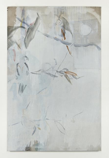 , 'Kingstown Parakeets,' 2014, Simon Preston Gallery