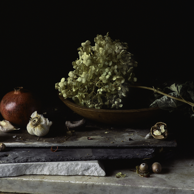 , 'Still Life with Pomegranate, Garlic, Hydrangea and Nuts,' , Pucker Gallery