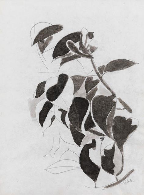 , 'Untitled (Black & White Leaves),' 1970, Rosenberg & Co.