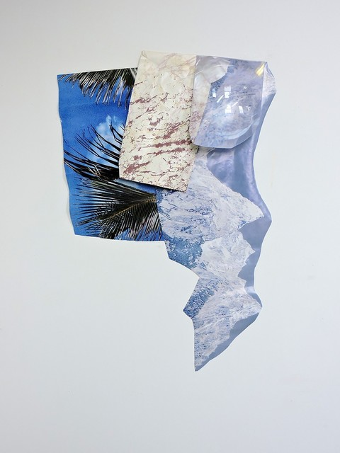 Megan Stroech, 'INS AND OUTS', 2015, birds + Richard
