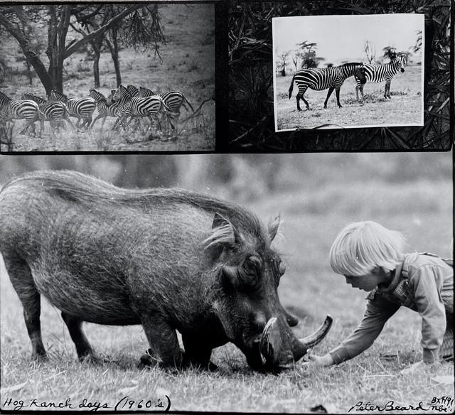 , 'Hog Ranch Days, 1990   ,' 1990, Michael Hoppen Gallery