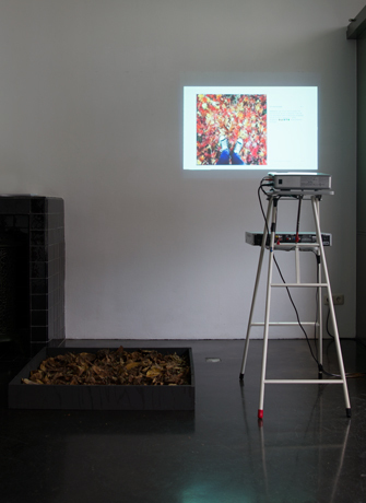 , '#autumnleaves - installation,' 2016, SEA Foundation