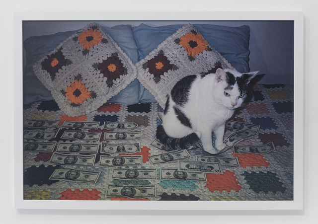 , 'Angry looking cat sitting on money,' 2003, The Hole