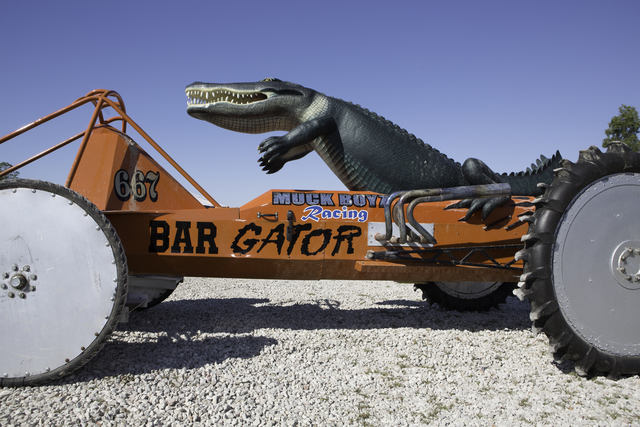 , 'Big Gator,' 2011, New Orleans Photo Alliance