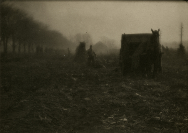 Ira Martin, 'Autumn Morning', 1923, Photography, Platinum or palladium print, Rick Wester Fine Art