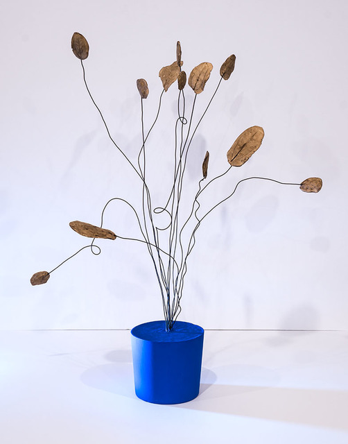 , 'blue vase 11.2016,' 2016, Erin Cluley Gallery