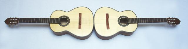 , 'Conjoined - Guitarras 204 x 38 cm,' 2019, le laboratoire