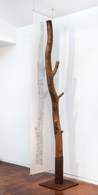 , 'Black wattle tree trunk from Sawpit camp with suspended drawing,' 2019, Roslyn Oxley9 Gallery