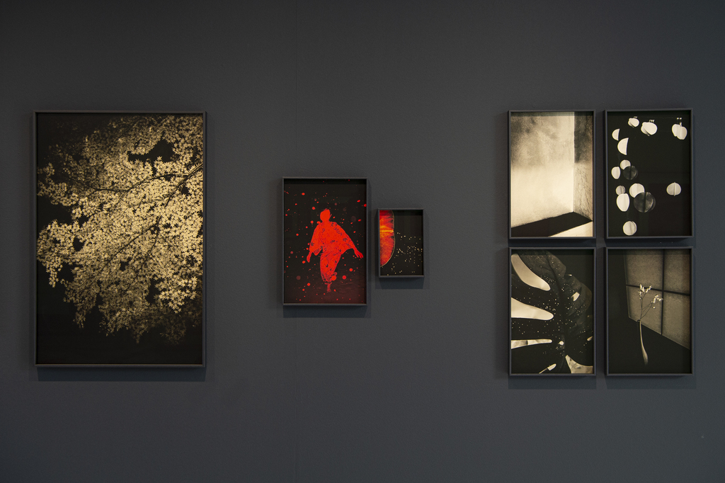 Wall of works by Paul Cupido in his solo show in Zurich