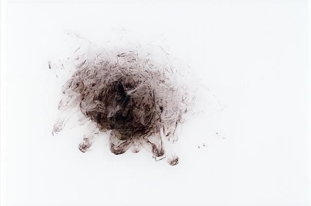 , 'Negative Star (Black),' , Heather James Fine Art