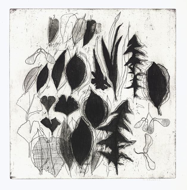 Nora Pauwels, 'Street Plants', 2019, Print, Etching, Kala Art Institute