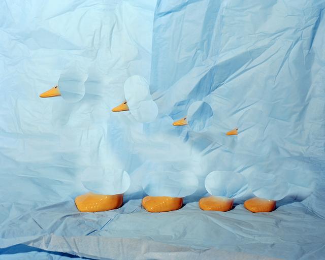 , 'Ducks,' 2014, Rodolphe Janssen