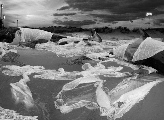 Anthony Goicolea, 'Sleeping Giants', 2011, Galerie Ron Mandos