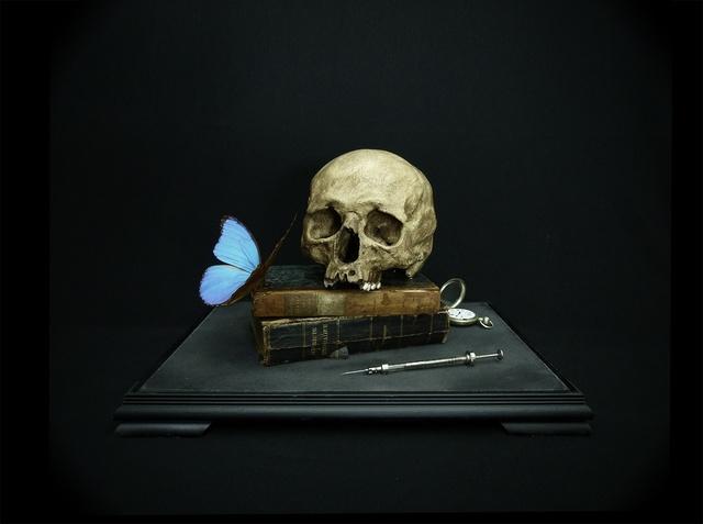 , 'Memento mori with pocket watch and morpho,' 2015, Nanda Hobbs Contemporary