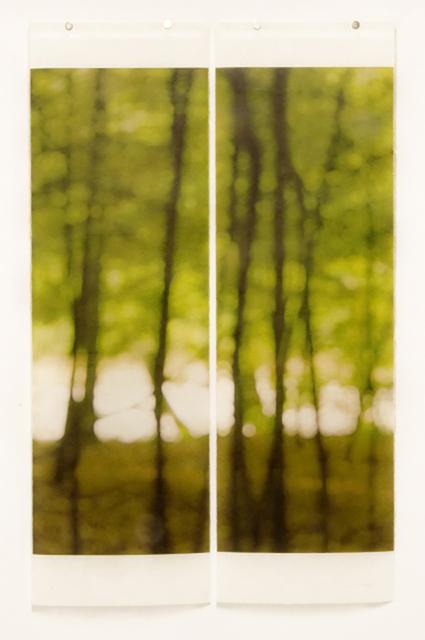 Jeri Eisenberg, 'Towards the Stream', 2009, Carrie Haddad Gallery