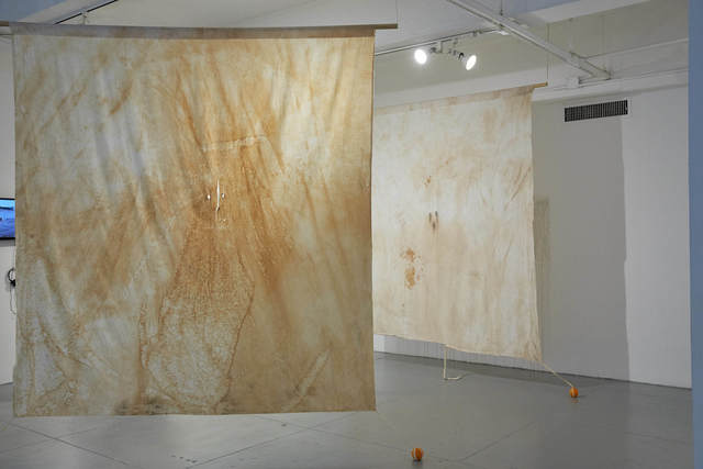 , 'Given Over to Want,' 2007, EFA Project Space