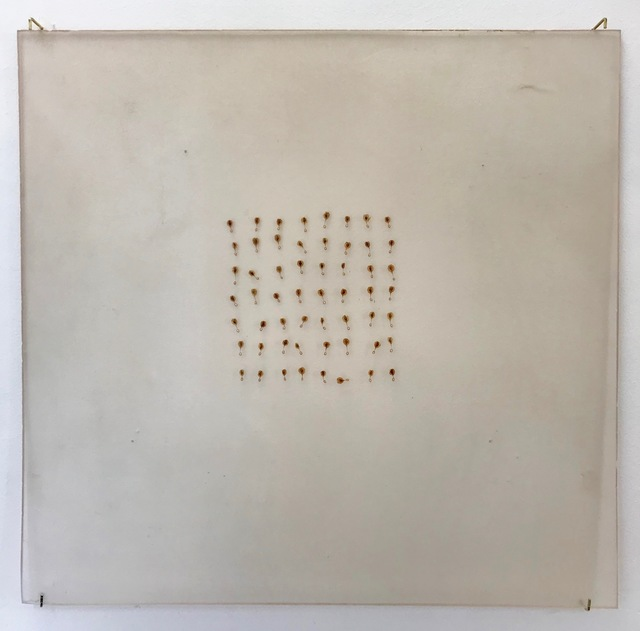 , '»Embryo« (Kaulquappe) III«,' 2018, SMUDAJESCHECK