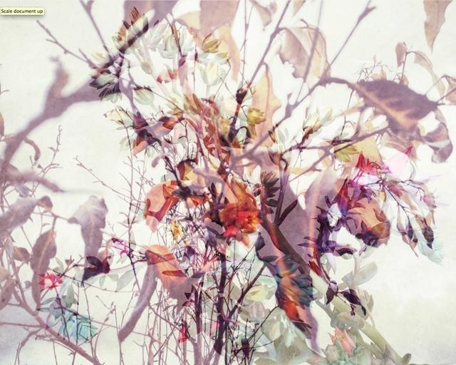 , 'botanical 5,' 2018, manZArt