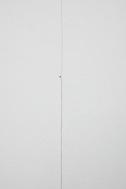 Wilfredo Prieto, 'Black hair and camouflage polyester', 2019, Meessen De Clercq