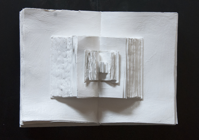 , 'Discendenze,' 2011, Galleria Ca' d'Oro