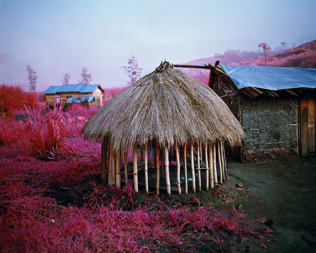 Richard Mosse, 'Come Out (1966) IV', 2011, carlier | gebauer