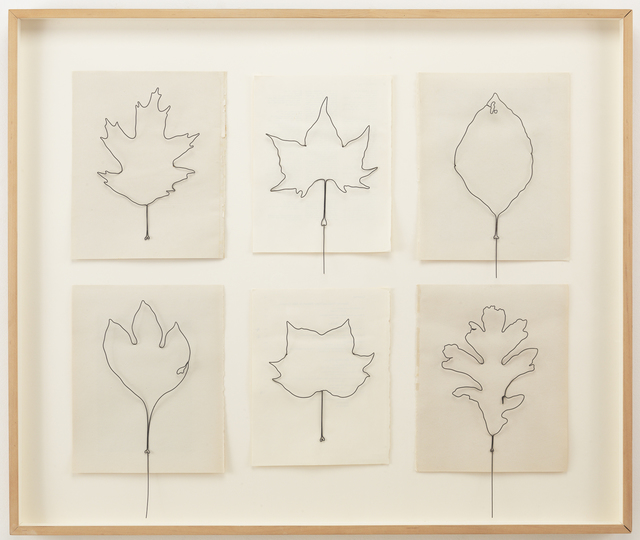 , 'Fly Leaves-Gathering of 6 (#8) (from Leaves an AIDS memorial),' 2004, National YoungArts Foundation