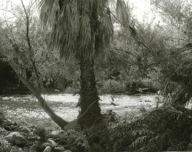 Mark Ruwedel, 'LA River/Glendale Narrows #31', 2017, Photography, Gelatin silver print dry-mounted to archival board, Gallery Luisotti