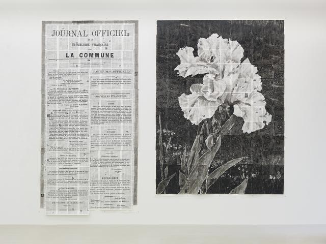 , 'Journal Officiel (Partie Non Officielle) and Iris,' 2014, Marian Goodman Gallery